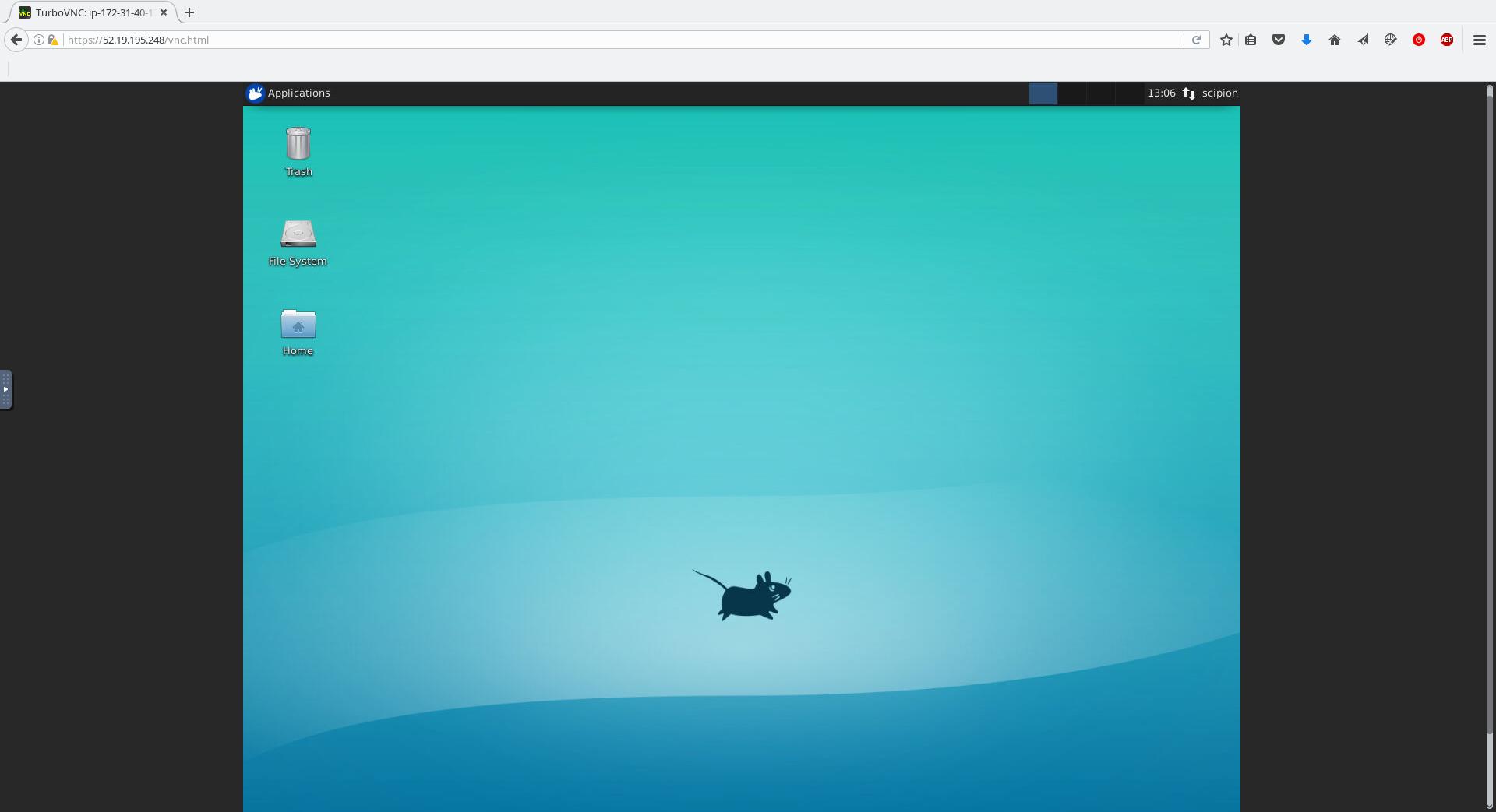 noVNC - desktop