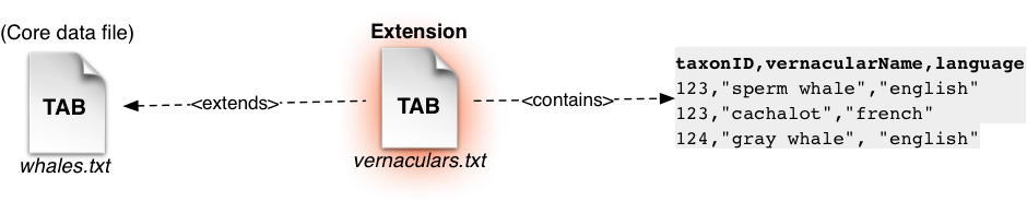 An extension is linked to the core file via the common taxon ID
