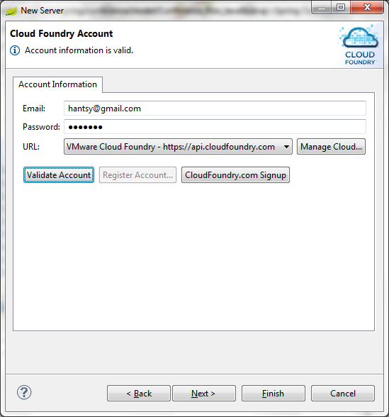 Create a cloudfoudry server instance