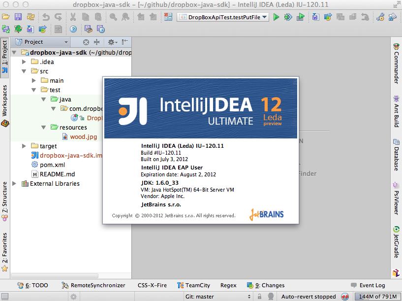 IDEA 12