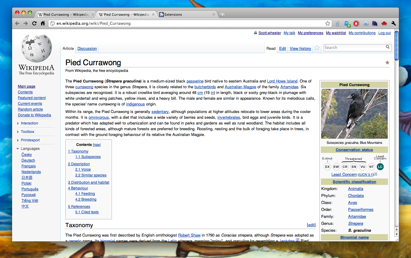 default Wikipedia layout