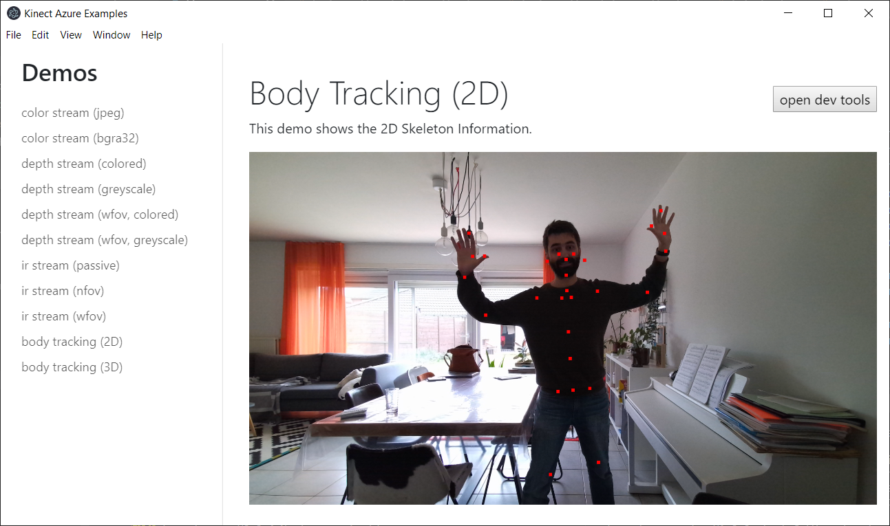 screenshot of skeleton 2d demo