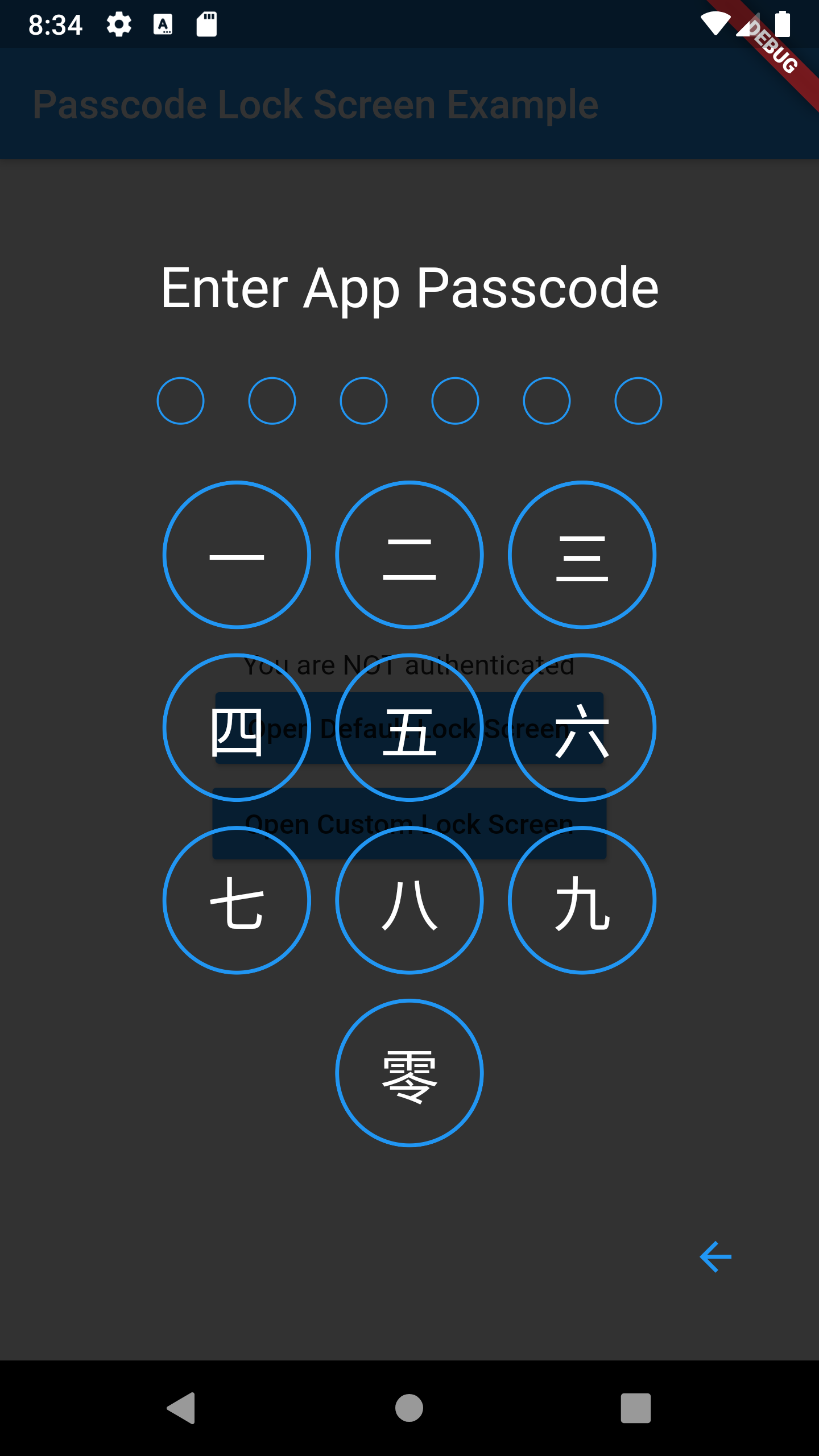 passcode-screen-custom.png