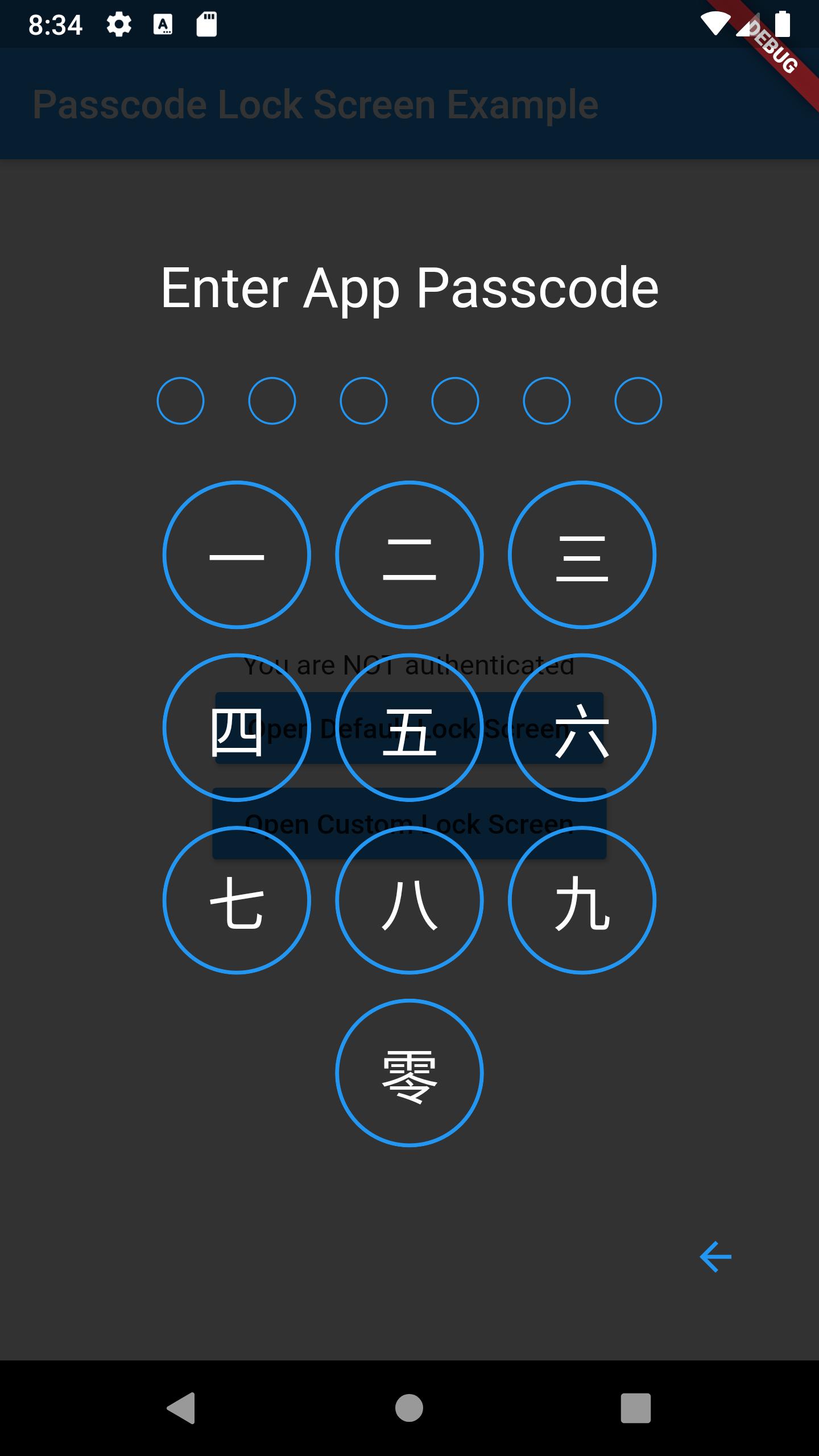 passcode-screen-custom.png