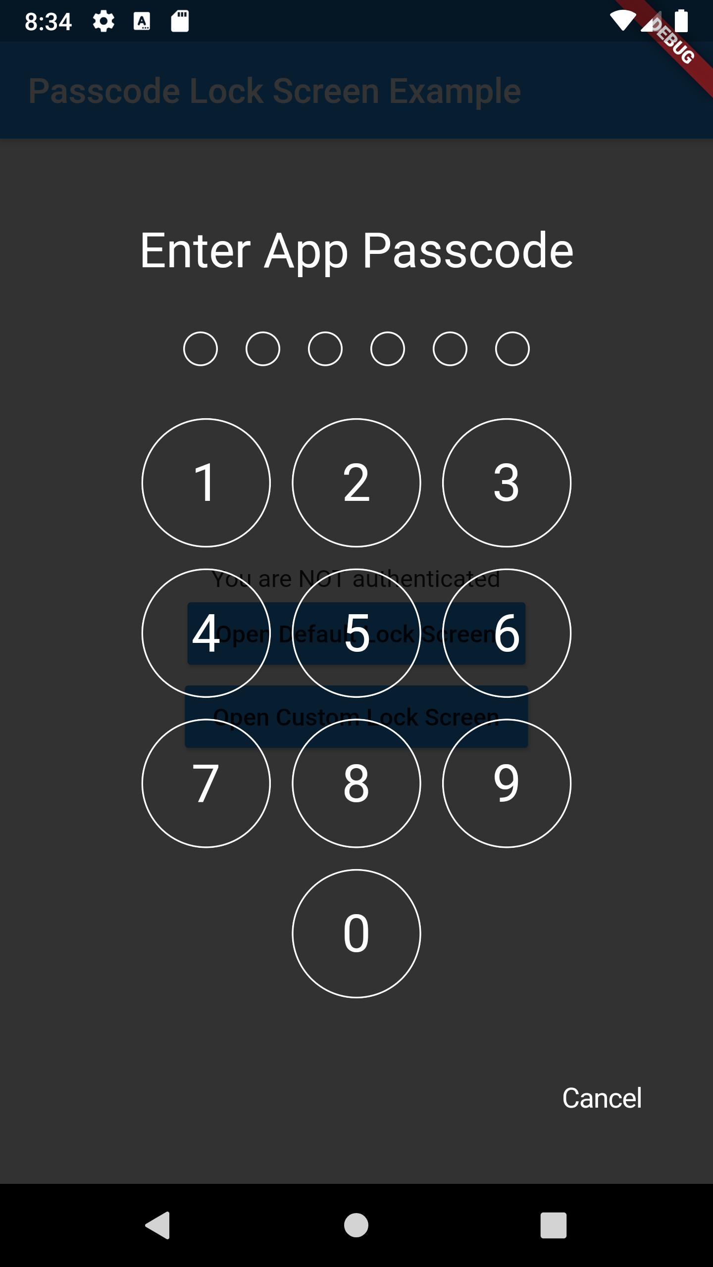 passcode-screen-default.png