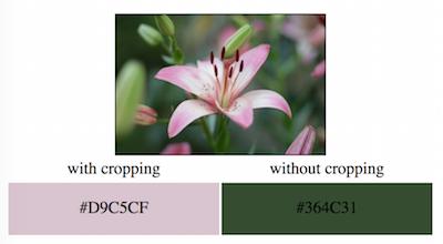 Using cropCenter