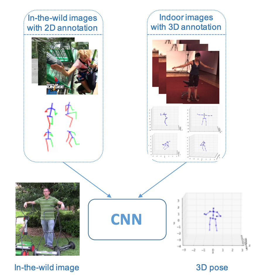 Papers With Code : Towards 3D Human Pose Estimation in the