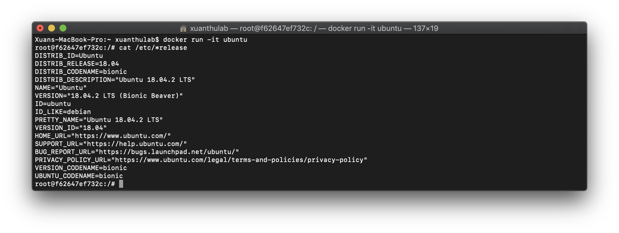 Docker Ubuntu