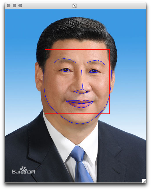 portrait detection