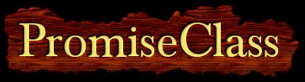 PromiseClass logo