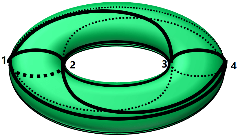 irregular triangulation of a torus