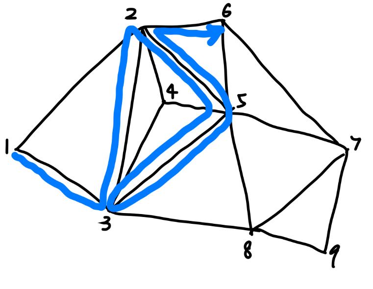 path on polygon