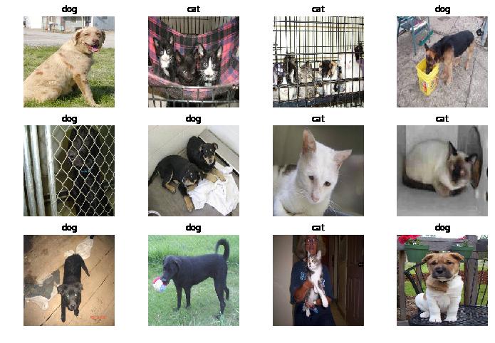 Dogs Vs Cats Dataset