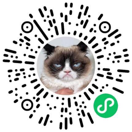 cat-programmer