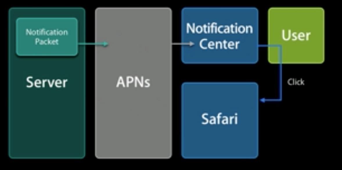 Safari 推送过程