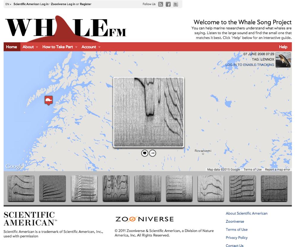 Whale FM Screenshot